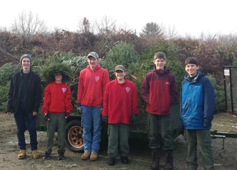 Christmas Tree Pickup